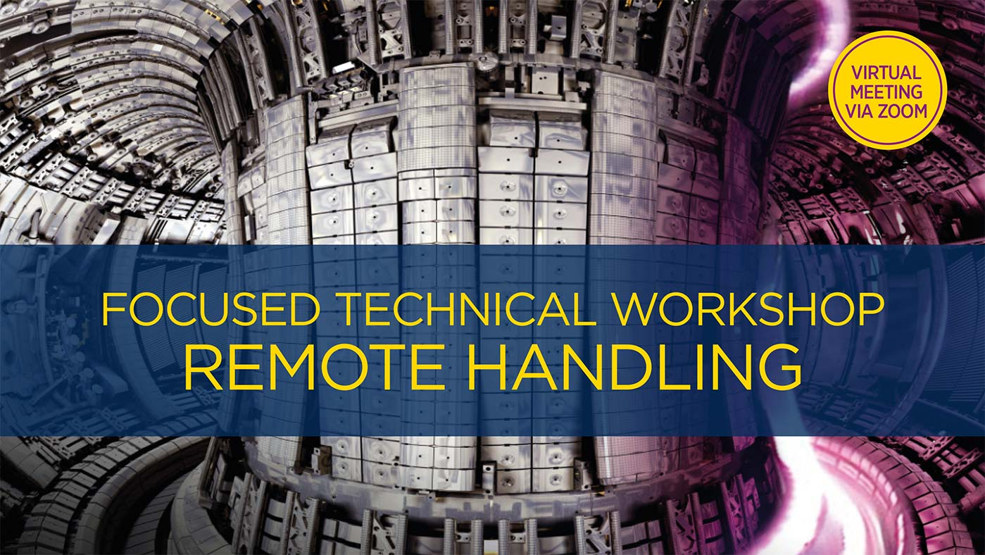 Focused Technical Workshop: Remote Handling